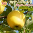 りんご シナノゴールド 3kg(9〜10玉) 長野県産 産地直送 減農薬栽培 秀品:c42