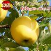 長野県産 りんご シナノゴールド 3kg(6〜10玉) 産地直送 お取り寄せ 秀品:c42-m