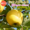 訳あり りんご シナノゴールド 3kg(6〜10玉) 長野県産 産地直送 お取り寄せ:c43-m