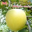 長野県産 りんご シナノゴールド 5kg(13〜20玉) 産地直送 お取り寄せ 秀品:c111-a