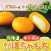 北海道チーズinかぼちゃもち 北海道 60g×6個入り 2パックセット お取り寄せ 冬至  南瓜 かぼちゃもち