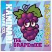 ザ グレープ vs アイス 15ml カミナリベイプ CO. / The Grape vs Ice Kaminari Vape Co. VAPE用リキッド