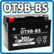 バイク バッテリー YT9B-BS(CT9B-4 GT9B-4 YT9B-4互換)一年保証