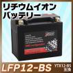 バイクバッテリー長寿命 リチウムイオンバッテリーLFP12-BS(YTX12-BS CTX12-BS FTX12-BS GTX12-BS互換)即用 1年保証