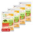 明日葉&コレウスフォルスコリ&白いんげん豆エキス BIGサイズ約1年分 サプリ サプリメント 送料無料