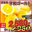 愛媛産 宇和ゴールド 9kg 2L ご家庭用 柑橘 フルーツ 国華園