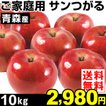 りんご 【超買得】青森産 ご家庭用 サンつがる 10kg1...