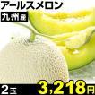 メロン 九州産 アールスメロン 2玉 冷蔵 食品