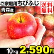りんご 青森産 ちびふじ 10kg 1組 送料無料