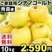 りんご 青森産 ご家庭用 シナノゴールド 10kg 1箱 ...