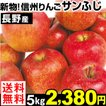 りんご 長野産りんご サンふじ 5kg 送料無料【2017年新物りんご・秋発送】ふじりんご