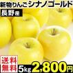 りんご 長野産 シナノゴールド 5kg 送料無料【2017年新物りんご・秋発送】