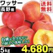 桃 長野産 ワッサー 5kg 1箱 送料無料 18〜32玉