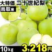 梨 大特価 鳥取産 二十世紀梨 10kg 1箱