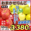 りんご リンゴ ただいま発送中  ご家庭用 青森産 おまかせりんご 10kg 1箱 送料無料【2017年新物りんご・秋発送】