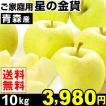 リンゴ ご家庭用 青森産 星の金貨 10kg 1箱 送料無料【数量限定】【2017年新物りんご・秋発送】