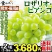 ぶどう 熊本・福岡産 ロザリオビアンコ 約2kg1組 3〜5房 送料無料