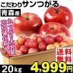 りんご 青森産 村上さんのこだわりサンつがる 20kg 送料無料 サンつがる【数量限定】