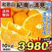 みかん 清見オレンジ 5kg 和歌山県産 紀南の清見オレンジ ご家庭用