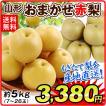 梨 お買得 おまかせ梨 山形産 約5kg 1箱 ご家庭用 和梨 赤梨 品種おまかせ  豊水 南水 秋月 数量限定