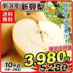 梨 新興梨(10kg)14〜36玉 超特価 産地おまかせ ご家庭用 なし しんこう 和梨 フルーツ 果物 国華園