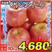 りんご 大特価 青森産 ご家庭用 シナノスイート (10kg) 24〜56玉 数量限定 林檎 フルーツ 果物 国華園