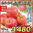 りんご 山形産 みちのく 山形ふじ(10kg) ご家庭用 ふじ サンふじ 林檎 フルーツ 果物 国華園