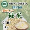 緑米 1kg 送料無料 希少種 雑穀のマイスターが厳選したおいしい緑米 クロロフィル豊富