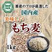 もち麦 国産 送料無料 ご飯にまぜてプチプチ感がたまらない 1kg 雑穀のマイスターが厳選したおいしいもち麦