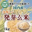 発芽玄米 1kg ギャバが豊富 送料無料 雑穀のマイスターが厳選したおいしい発芽玄米