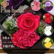 プリザーブドフラワー ボックスアレンジ ローズ カーネーション LuxuryyBox ラグジュアリーボックス 枯れない花