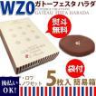 ガトーフェスタハラダ グーテ・デ・ロワ プレミアム ノワゼット簡易箱 5枚 WZ0 ラスク ハラダ チョコレート