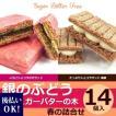 季節限定 阪急限定 シュガーバターの木 阪急限定 春の詰合せ■14個入(A2577)