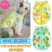 犬 服 レモンメッシュジップアップ 背中開き クール 冷感 涼しい 袖なし ドッグウェア 夏服 PQ