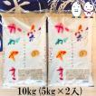 お米 10kg(5kg×2) 埼玉県産彩のかがやき 令和2年産