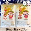 お米 10kg(5kg×2) 千葉県産ふさこがね 令和2年産