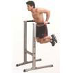 (動画参照)(ディップス スタンド)Bodysolid ボディソリッド ディップスステーション GDIP59/検品後発送