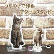 ペット仏具 うちの子の写真で  アクリル フォトスタンドS オリジナル 愛猫 フォトプレート 愛犬 ウエルカムボード ペット メモリアル 位牌  思い出