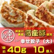 餃子 ぎょうざ 幸せ餃子(大)10個 神奈川県産「高座豚」使用 化粧箱入り 手包み