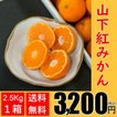 【送料無料】山下紅みかん(2.5kg×1箱)