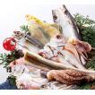 鮮魚の一夜干し7種8枚(約530g〜650g)