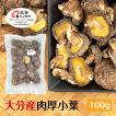 干し椎茸 大分県産 100g 肉厚 送料無料 原木栽培 (干ししいたけ 干しシイタケ) OITA30CP_2020_野菜果物