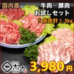国内産 お試しセット 牛肉&豚(国内産)肉 5点セット 1.5kg