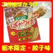 【栃木限定】餃子の街宇都宮ばかうけ・餃子味