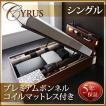 大量 CYRUS Cyrus ベッド ライト ガス圧 サイズ 大容量 棚付き サイロス 照明付き シングル 深さラージ 収納ベッド 木製ベッド モダンライト ベッド下収納