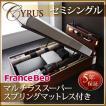 大量 CYRUS Cyrus ベッド ライト ガス圧 サイズ 大容量 棚付き 照明付き サイロス 木製ベッド 収納ベッド 深さラージ レギュラー丈 モダンライト 040107207
