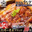 きざみ Z-10 うなぎ 10食  ( 1食 うなぎ50g・タレ20g )  蒲焼き   鰻 ウナギ 国産