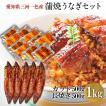 蒲焼き HCK-1000 うなぎ 500g + カット 500g(1パック 約50g)  鰻    ウナギ 国産 メガ盛り