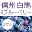 【白馬そだち】ジャム用冷凍ブルーベリー4kg【しろうま農場】