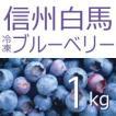 【白馬そだち】冷凍ブルーベリー1kg 有機JAS 無農薬